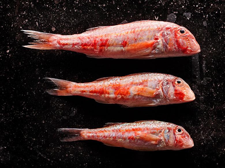 pesce-fresco-leporemare.jpg